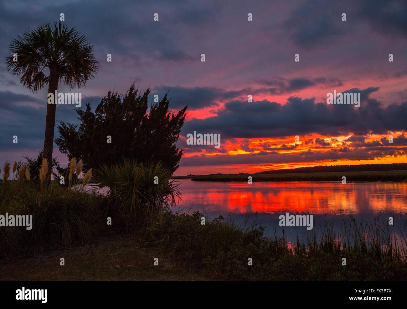 Fripp Island, Caroline du Sud, USA. Coucher de soleil sur l'ancienne maison Creek, palmetto de scie Silhouette. Photo Stock