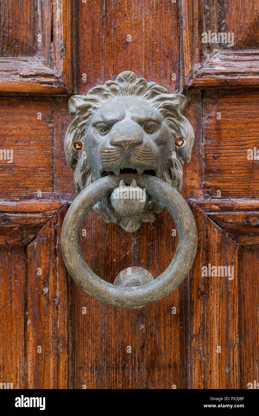 Tête de lion en laiton knocker sur une vieille porte Photo Stock
