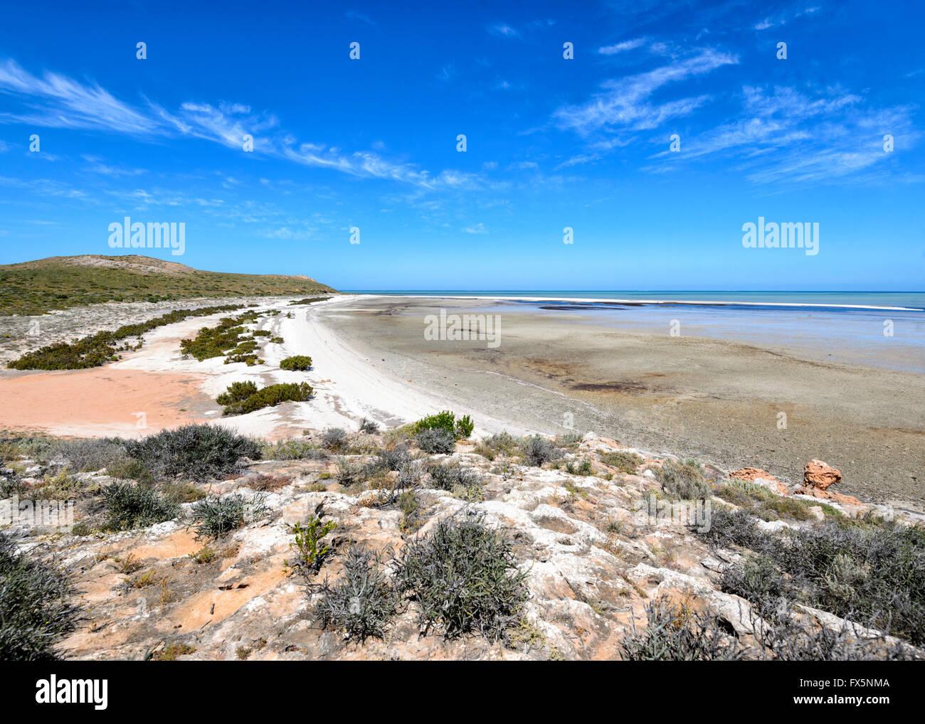 La baie Shark, Australie occidentale, WA, Australie Photo Stock