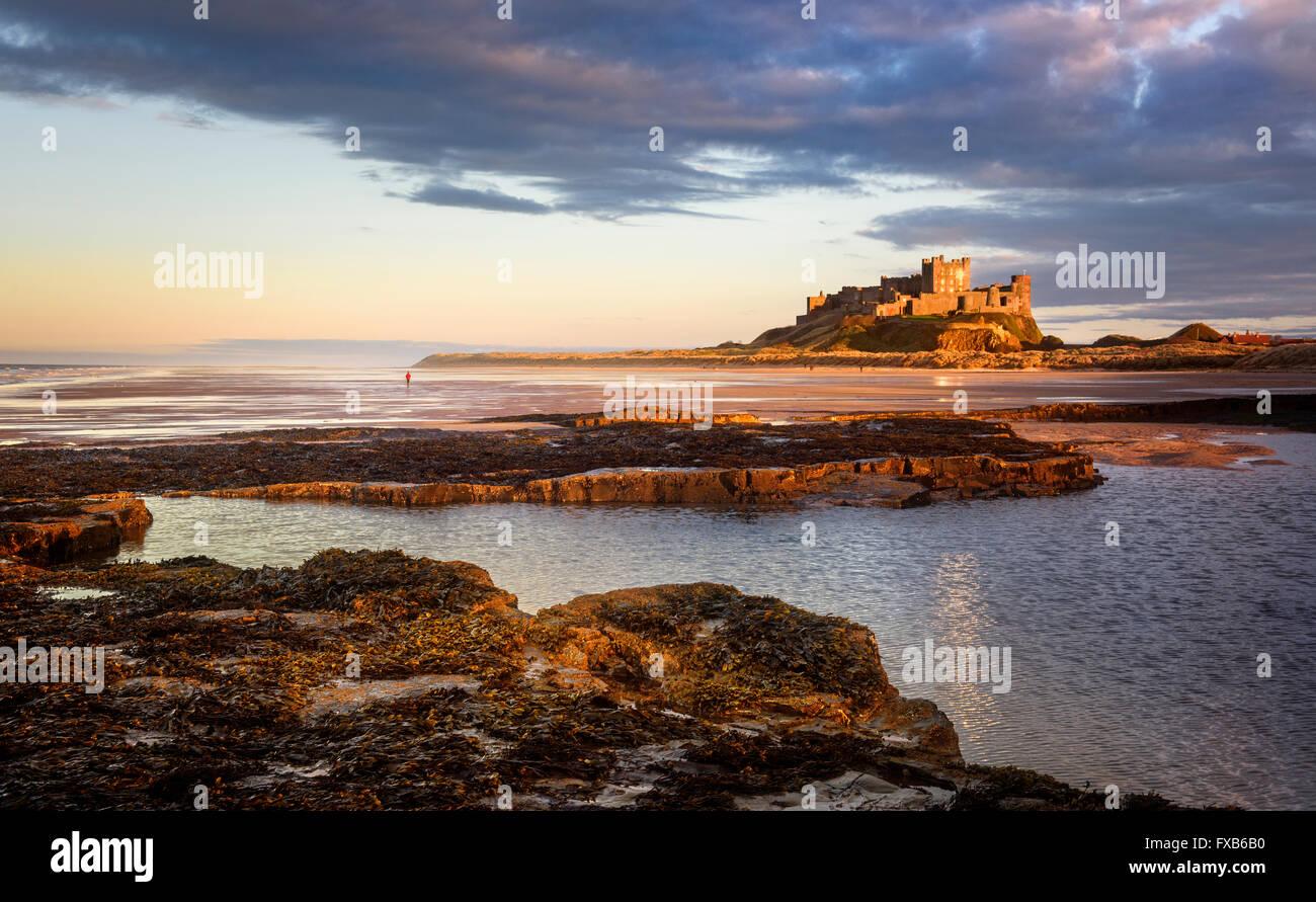 Château de Bamburgh dans la lumière du soleil du soir Photo Stock