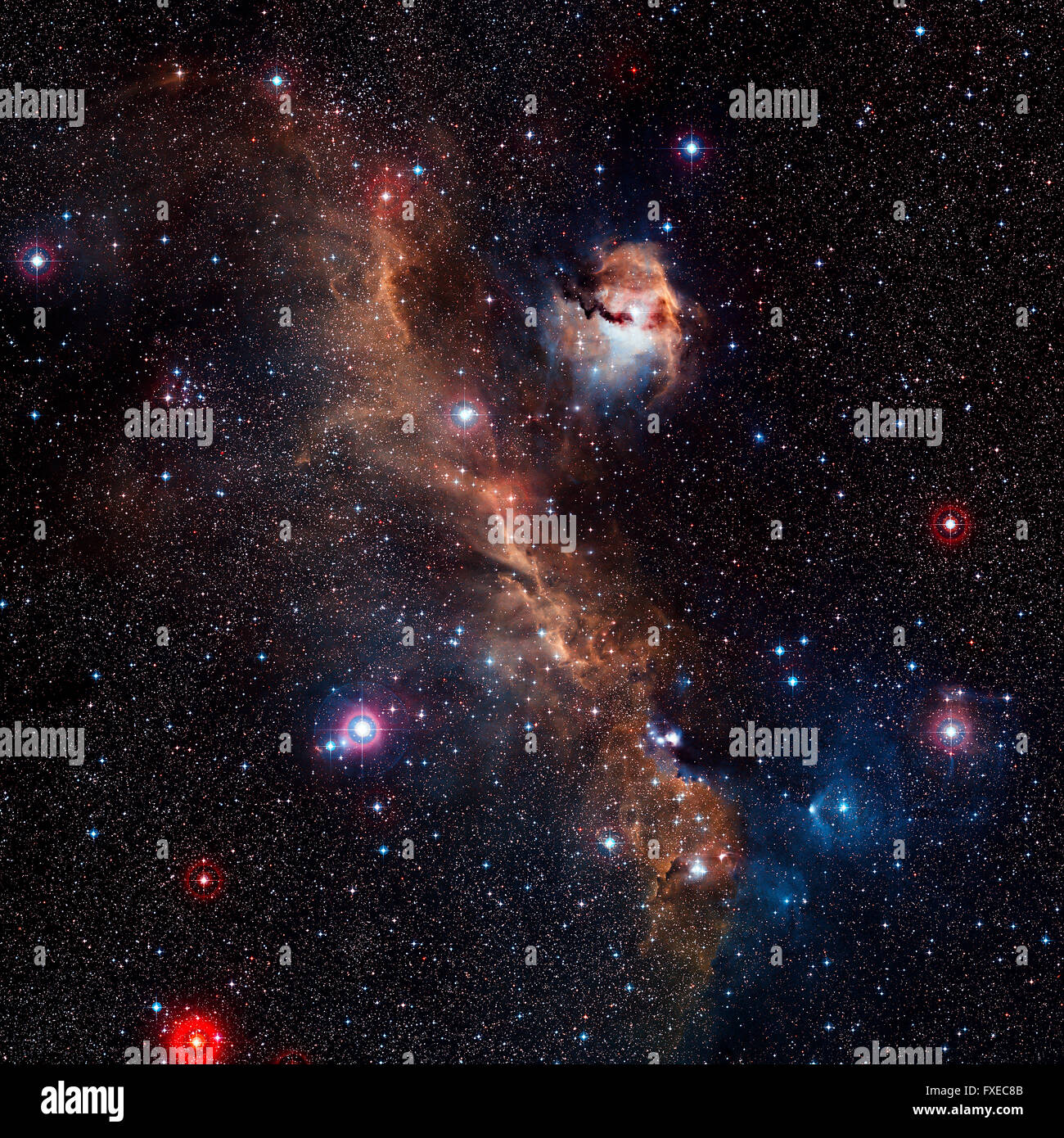 Étoile nébuleuse, belle et colorée dans l'espace d'explosifs Photo Stock