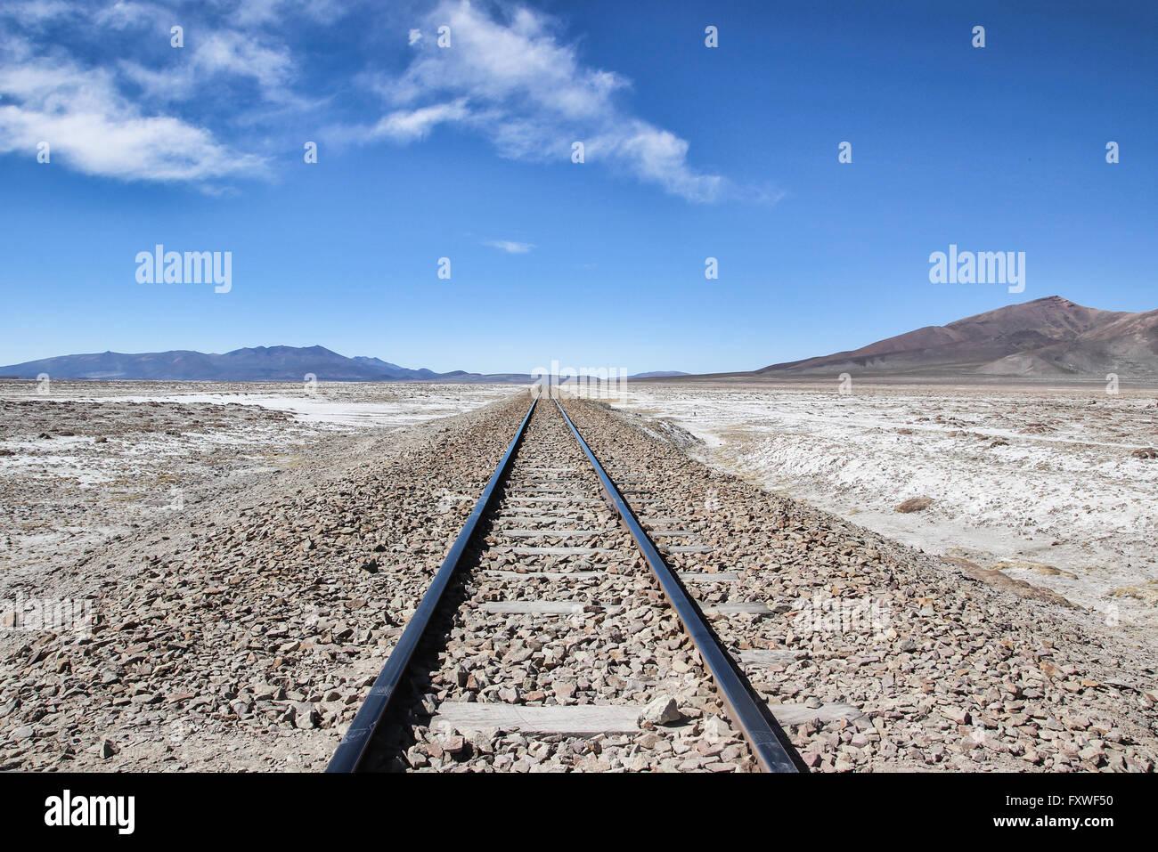 Bolivie - 21/08/2013 - Bolivie / Salar de Uyuni / Uyuni Uyuni, désert de sel - Isla del Pescado - Sandrine Photo Stock