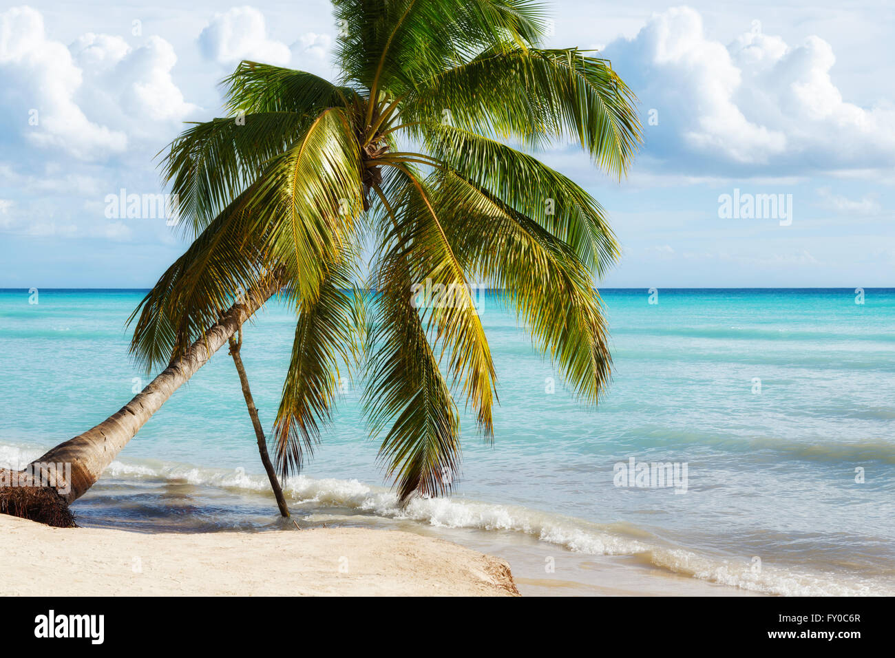 Paradise Beach à l'île de Saona, en République Dominicaine Photo Stock