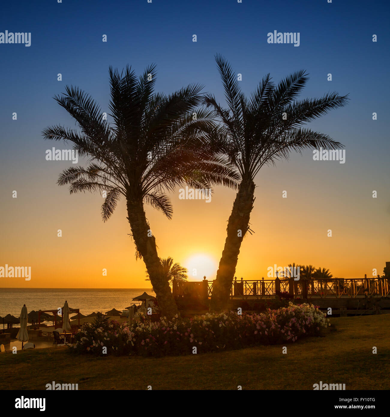 Le lever du soleil sur la mer Rouge, Marsa Alam, Egypte Photo Stock
