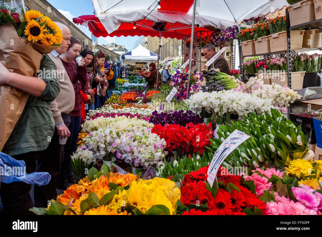 Les Londoniens d'acheter des fleurs sur Columbia Road Flower Market, Tower Hamlets, London, England Photo Stock