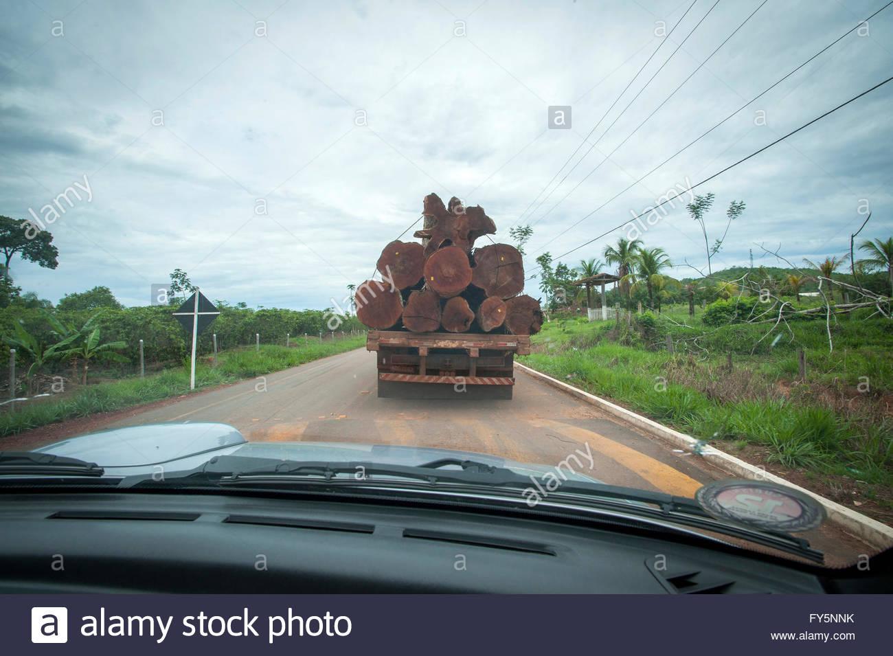 """Un camion d'exploitation forestière sur la """"Route du café"""" près de la """"7e réserve Photo Stock"""