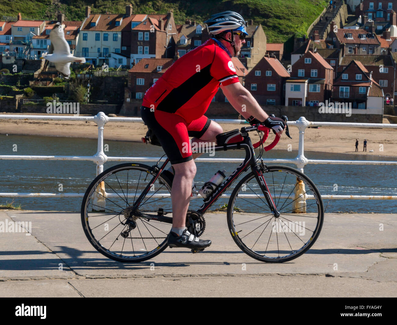 A middle aged man riding a bicycle sports sur Whitby West Pier Photo Stock