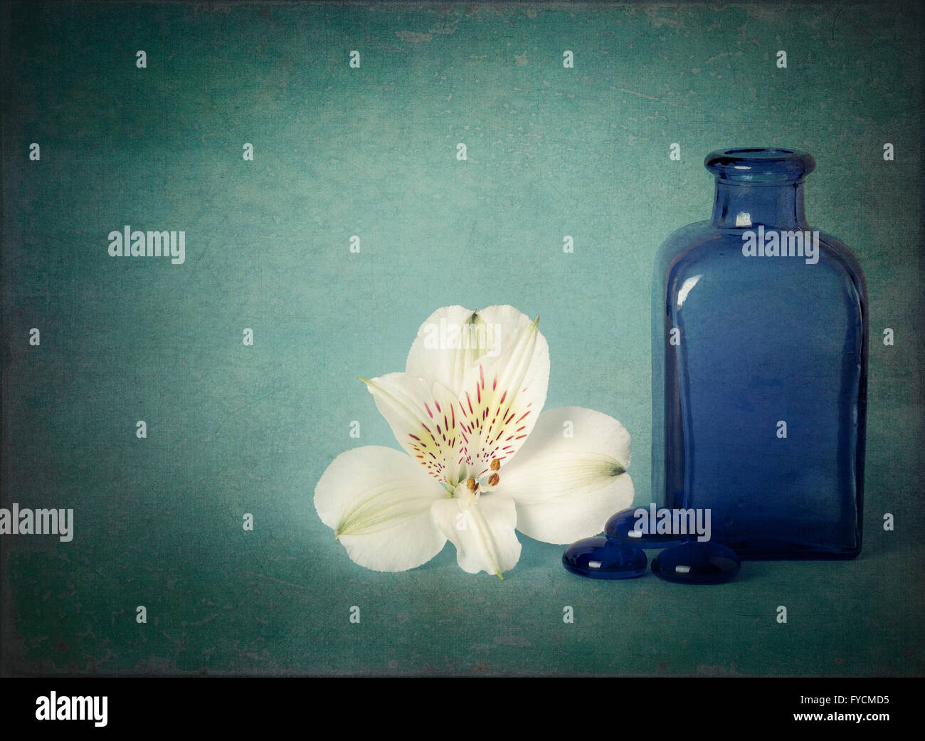 Nature morte avec fleurs fond texture Photo Stock