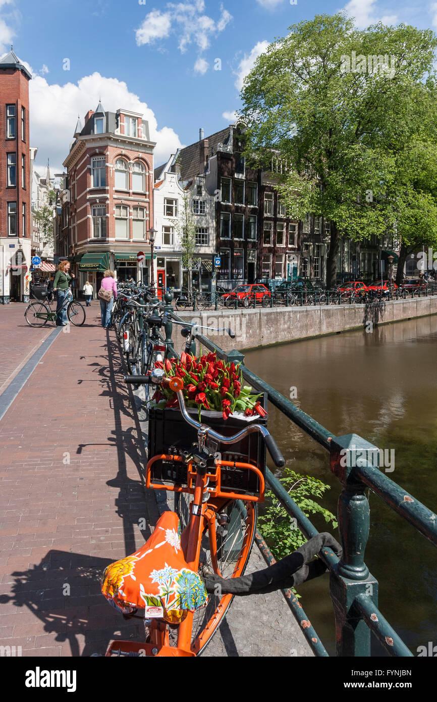 Amsterdam seul Gracht location avec des tulipes Amsterdam, Pays-Bas Photo Stock