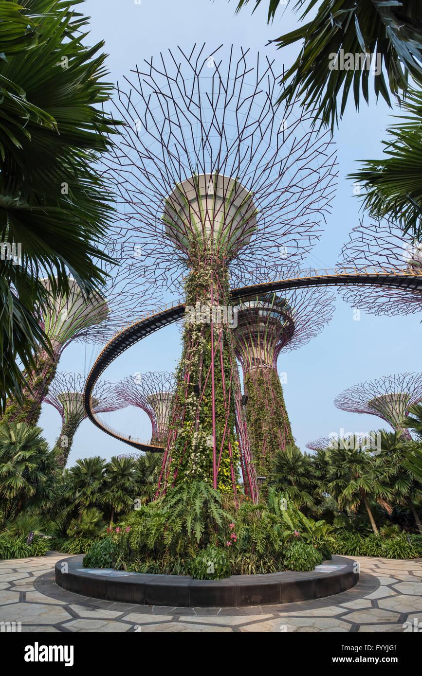 L\'offre Super arbres et jardins allée en par le Parc Naturel de la ...
