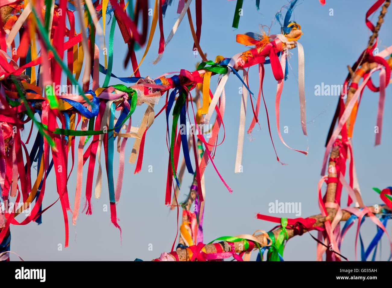 Tiens arbre branches attachées avec des rubans colorés Banque D'Images