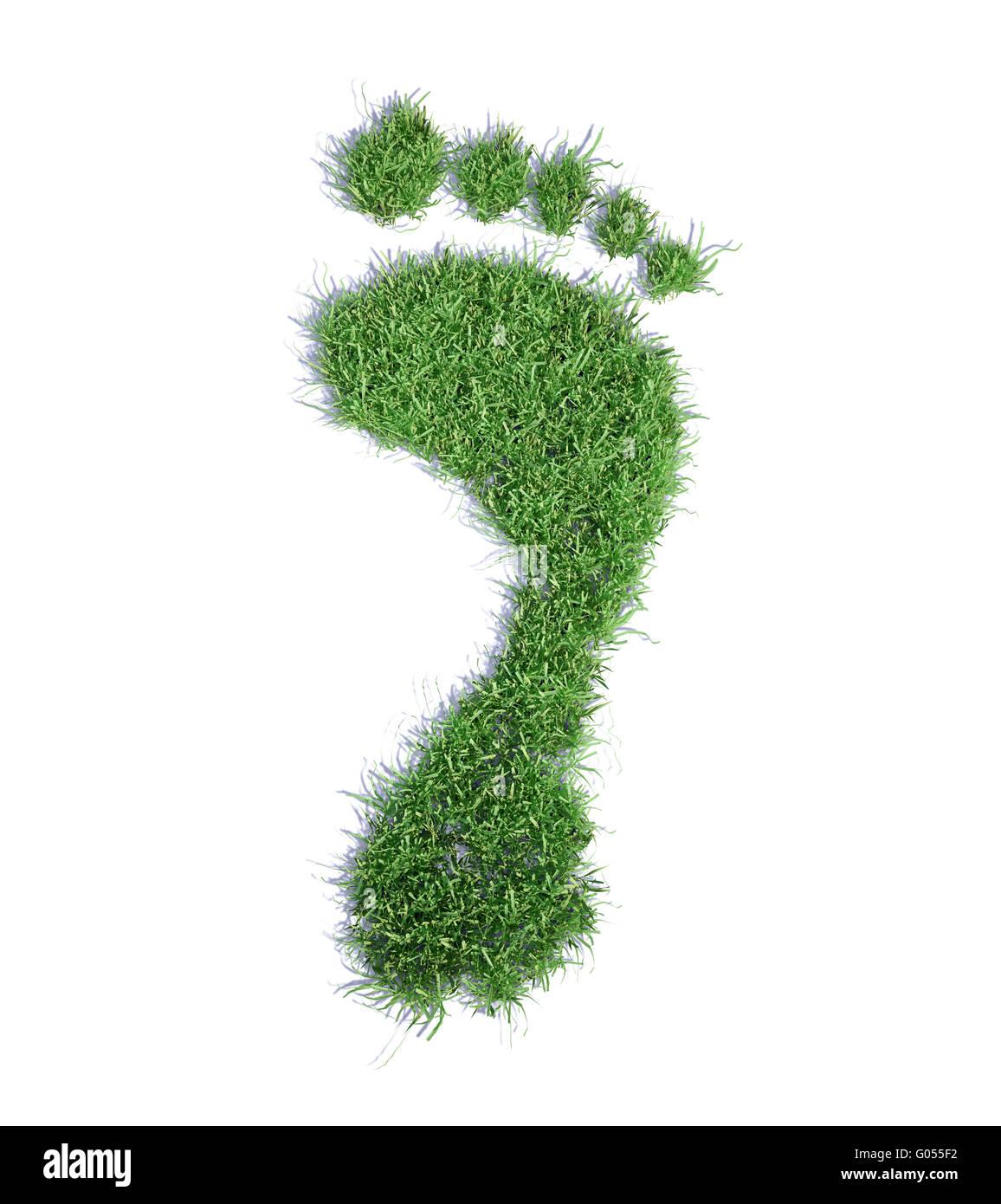 Concept de l'empreinte écologique de l'herbe - illustration empreinte patch Photo Stock