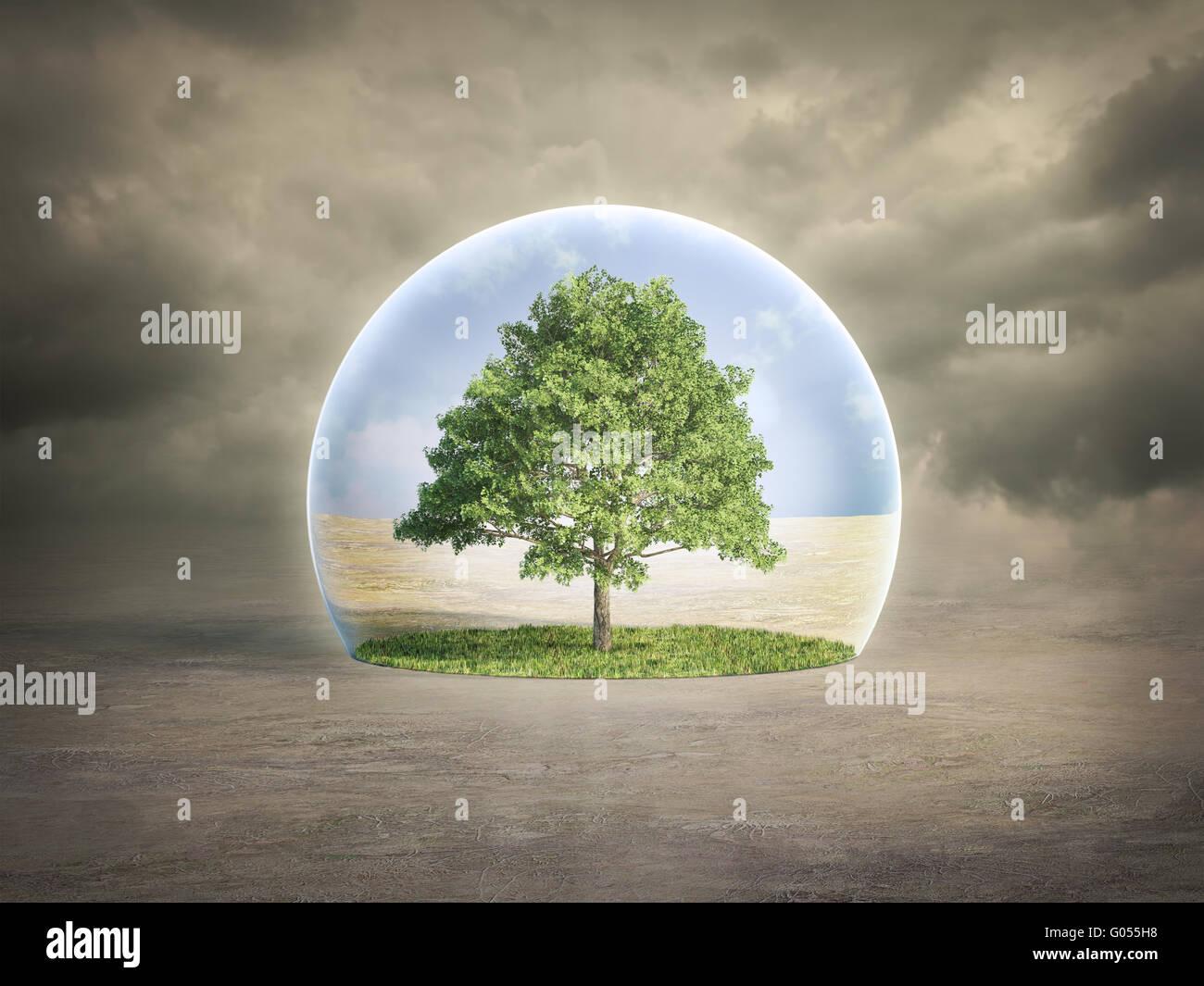 Concept de protection de l'environnement - arbre dans une bulle Photo Stock