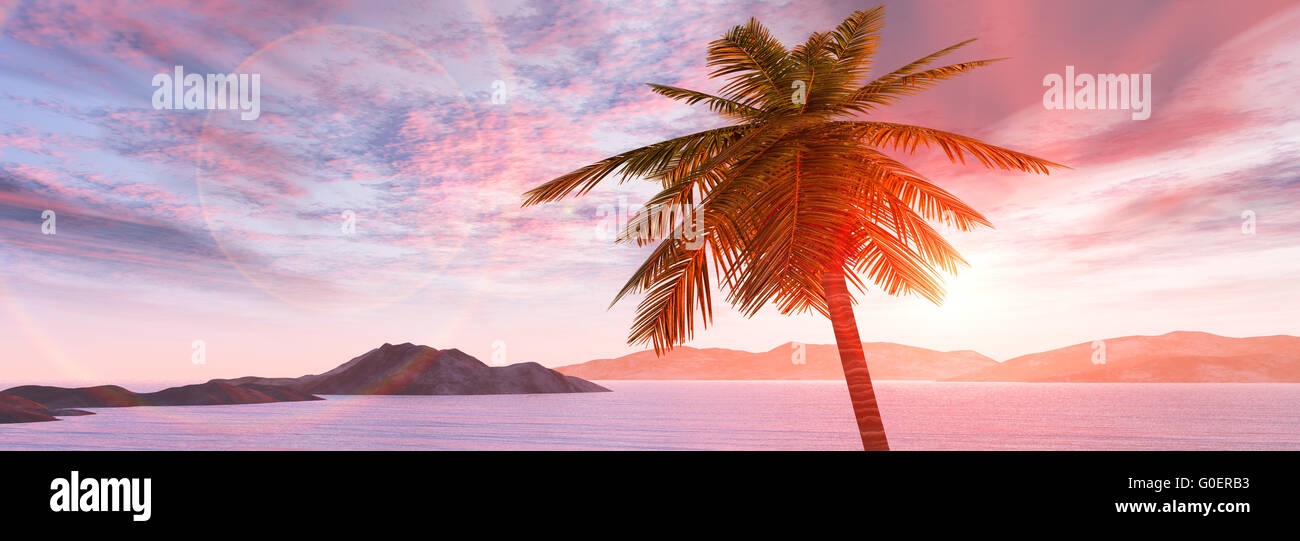 Lever du soleil tropical au bord de la mer, cocotier Photo Stock