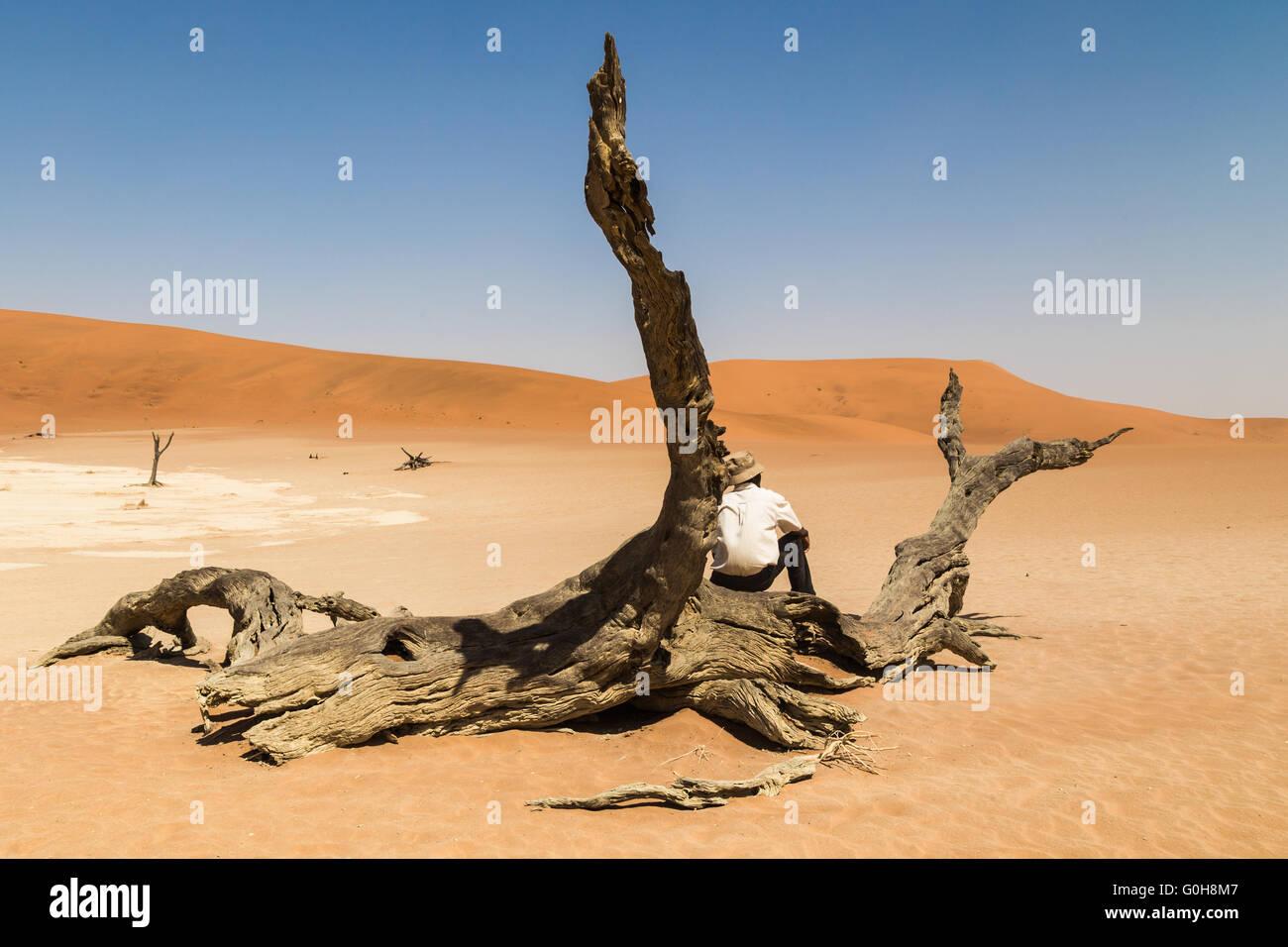 Homme seul assis sur une souche d'arbre au milieu du désert de Namibie. S'interrogeant sur amazing Photo Stock
