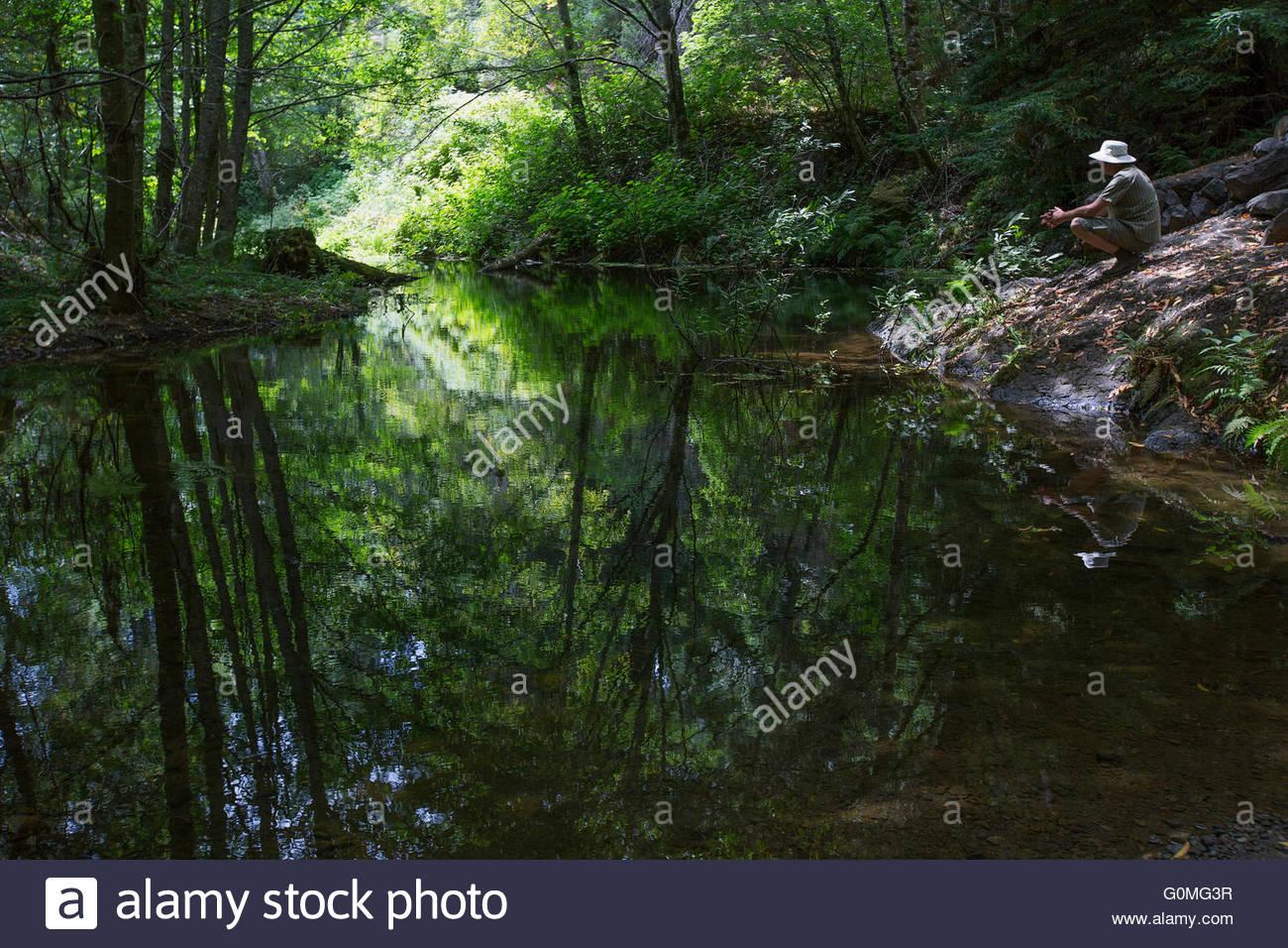L'homme accroupi au lac calme dans les bois Photo Stock