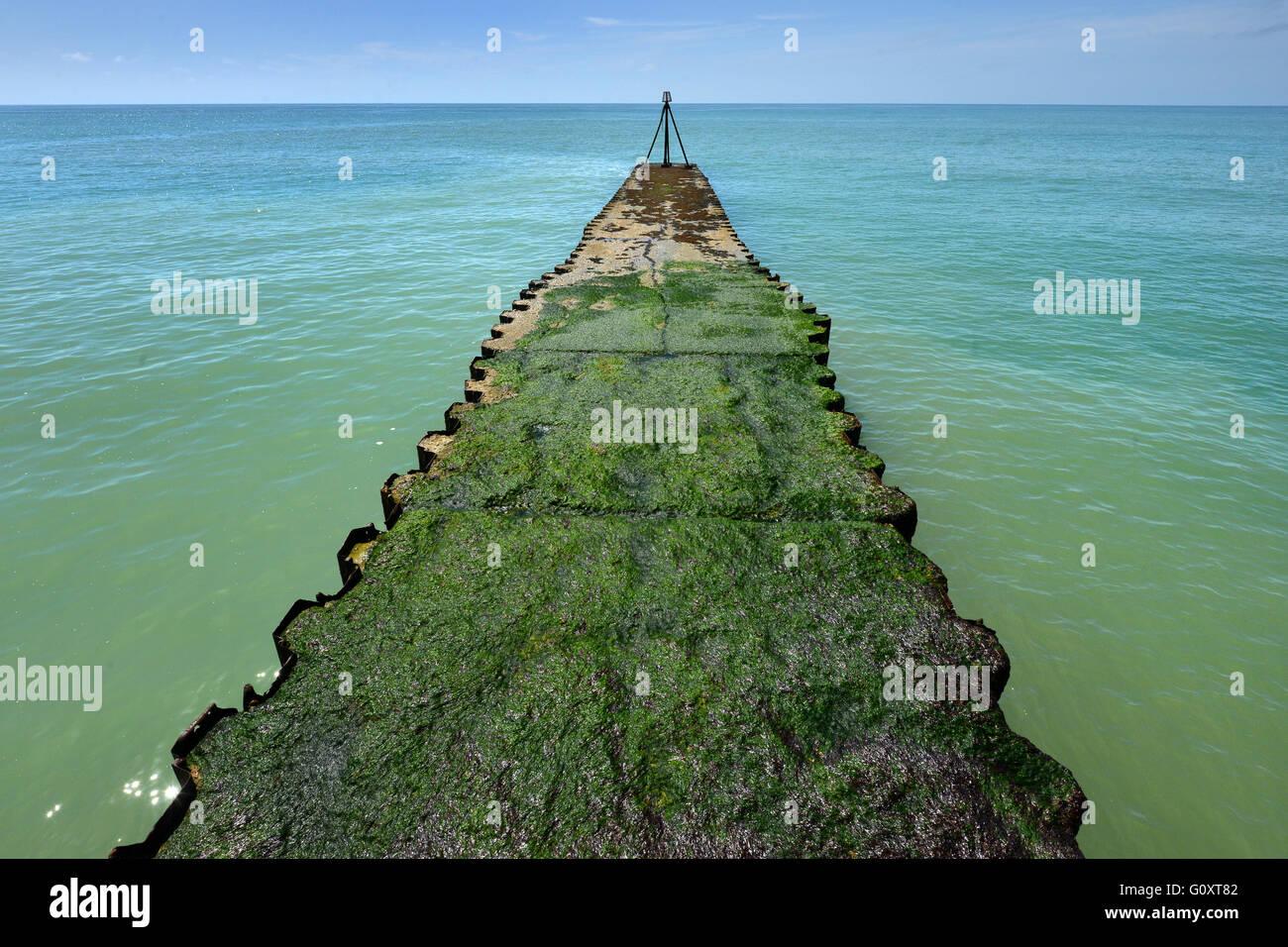 Couvert d'algues/jetée pier, Jalhay, UK Photo Stock