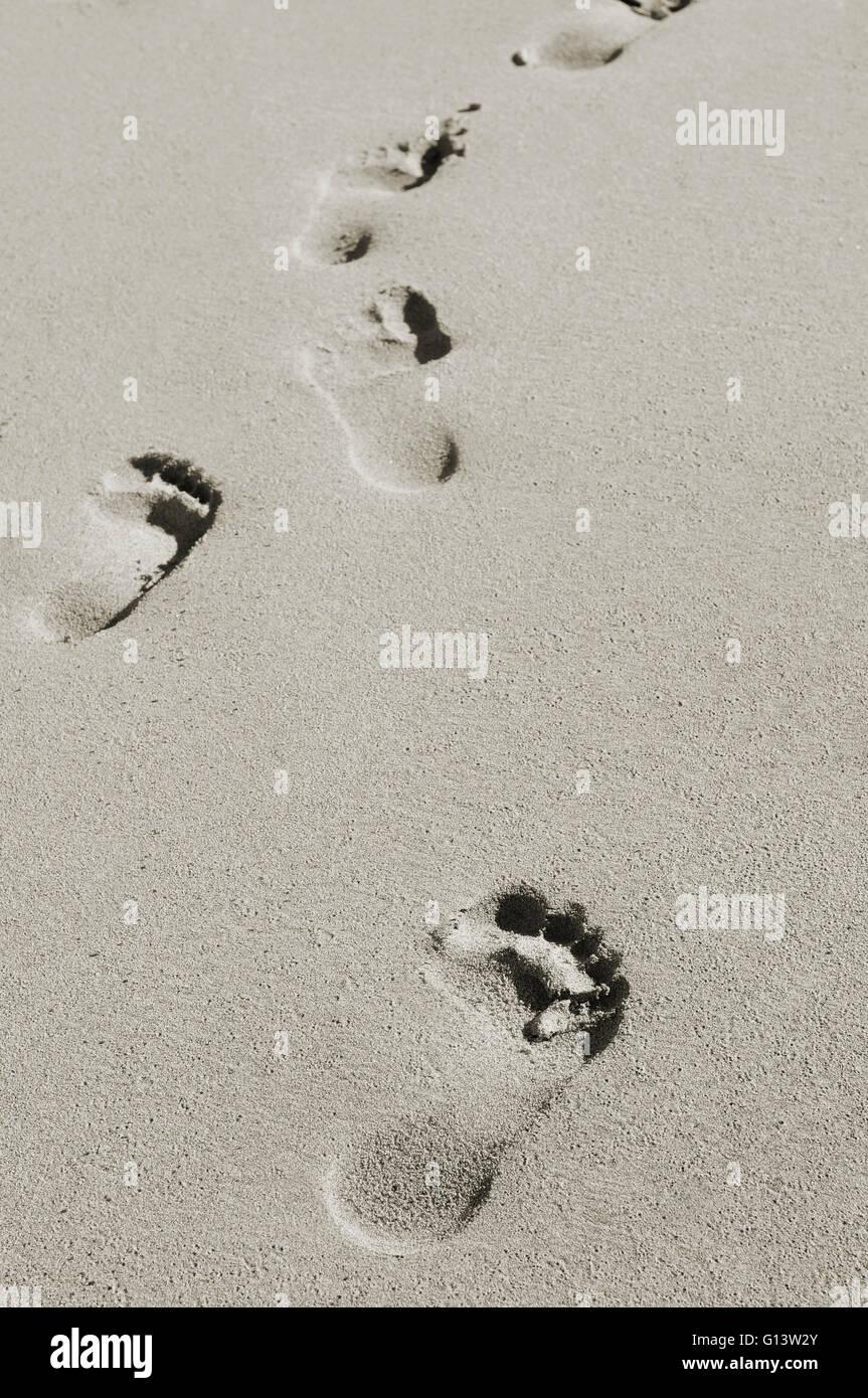 Des traces de pas dans le sable d'une plage Photo Stock