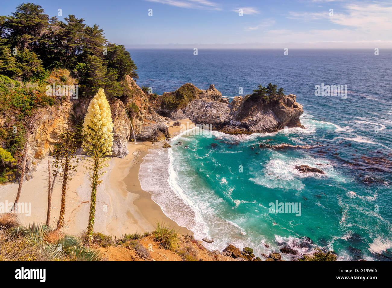 Plage, chutes et des fleurs à Big Sur, en Californie Photo Stock
