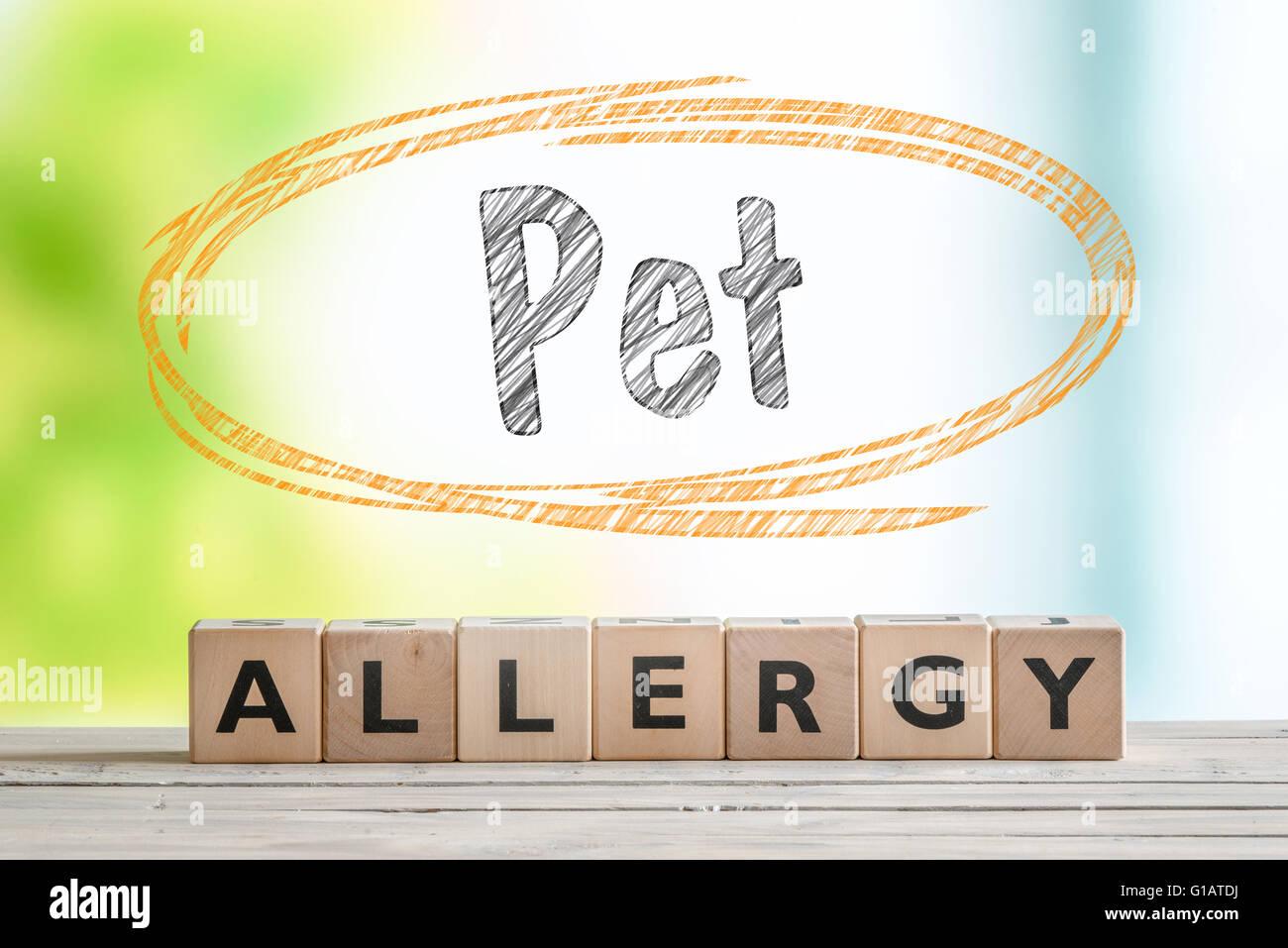 Allergie aux animaux domestiques signe sur un bureau en bois avec un