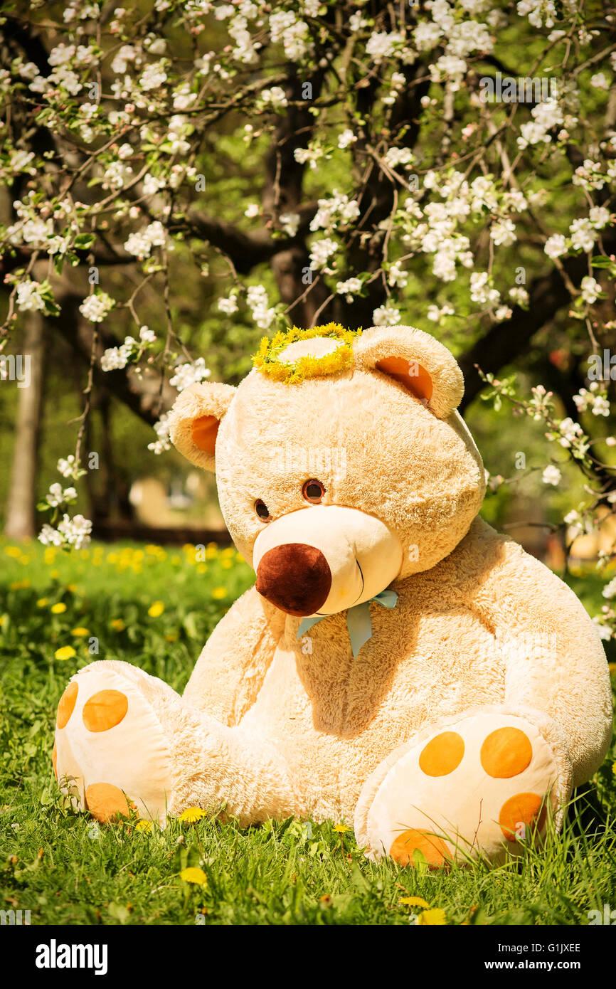Gros ours assis sous les arbres de soufflage Photo Stock