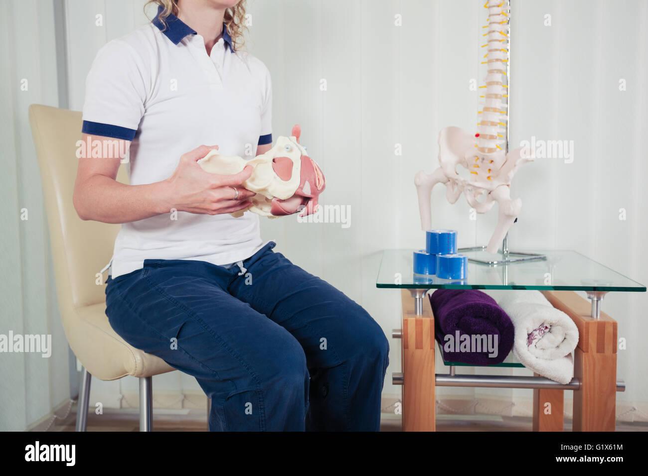Un physiothérapeute est assis dans son bureau et est maintenant un modèle de la pelvis humain Photo Stock