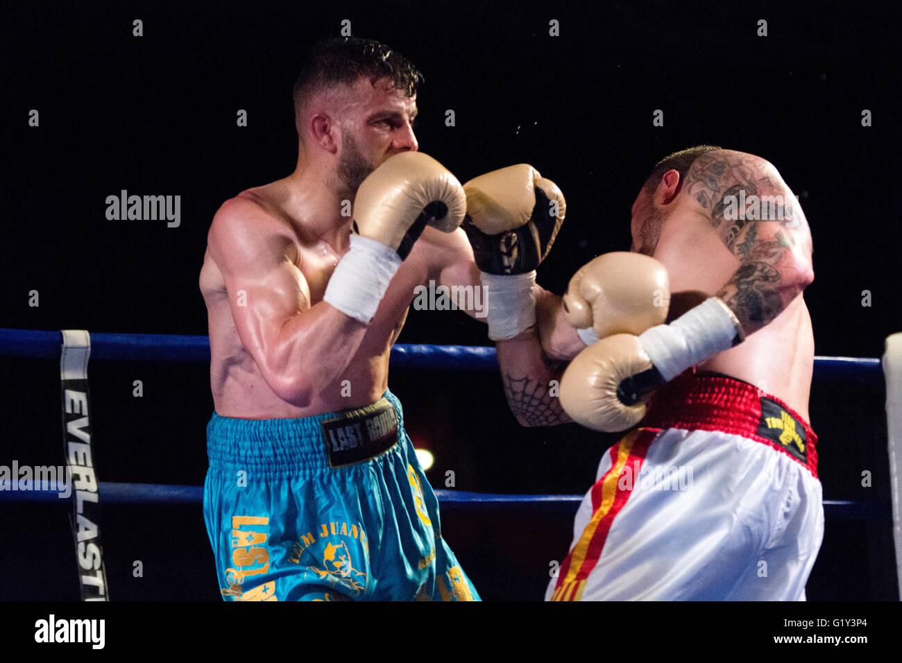 Gijon, Espagne. 21 mai, 2016. Juancho Gonzalez hits Marc Vidal lors de la match de boxe de championnat de boxe poids Photo Stock