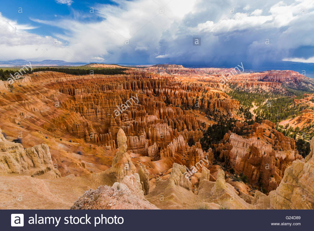 Le Parc National de Bryce Canyon cheminées Photo Stock