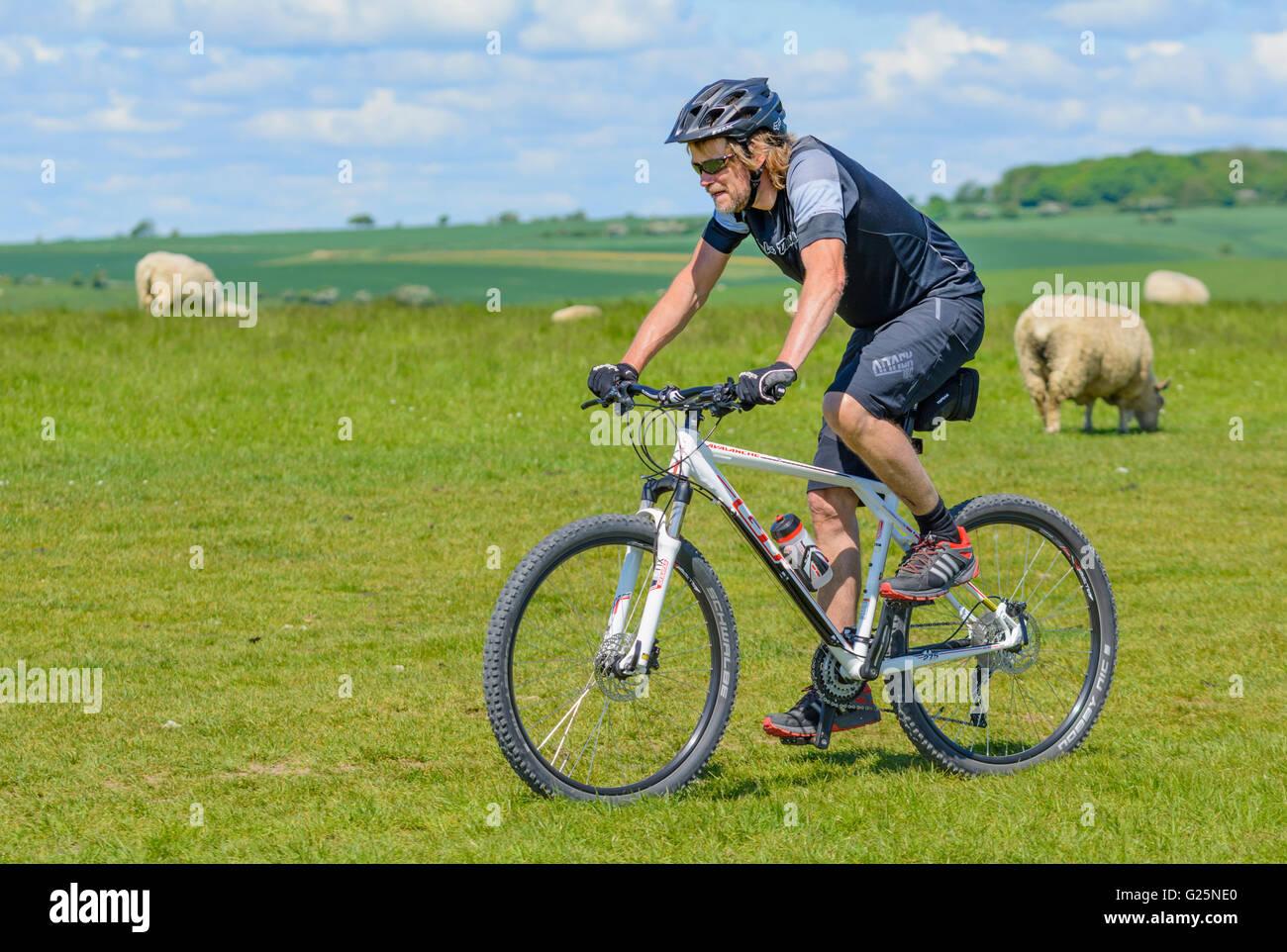 Jeune homme vélo à travers un champ dans la campagne britannique sur les South Downs, West Sussex, Angleterre, Photo Stock