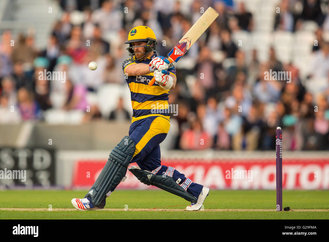 Londres, Royaume-Uni. 26 mai 2016. David Lloyd batting pour Glamorgan dans le T20 blast match de cricket de l'anneau. Photo Stock