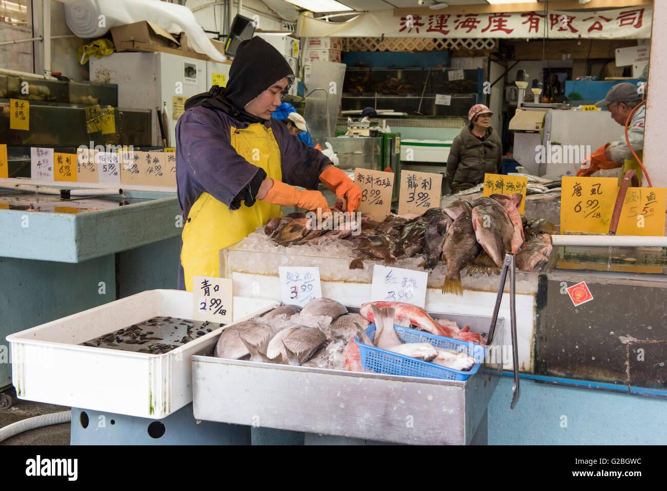 Marché de poissons Poissons monger Chinatown, Vancouver City Photo Stock