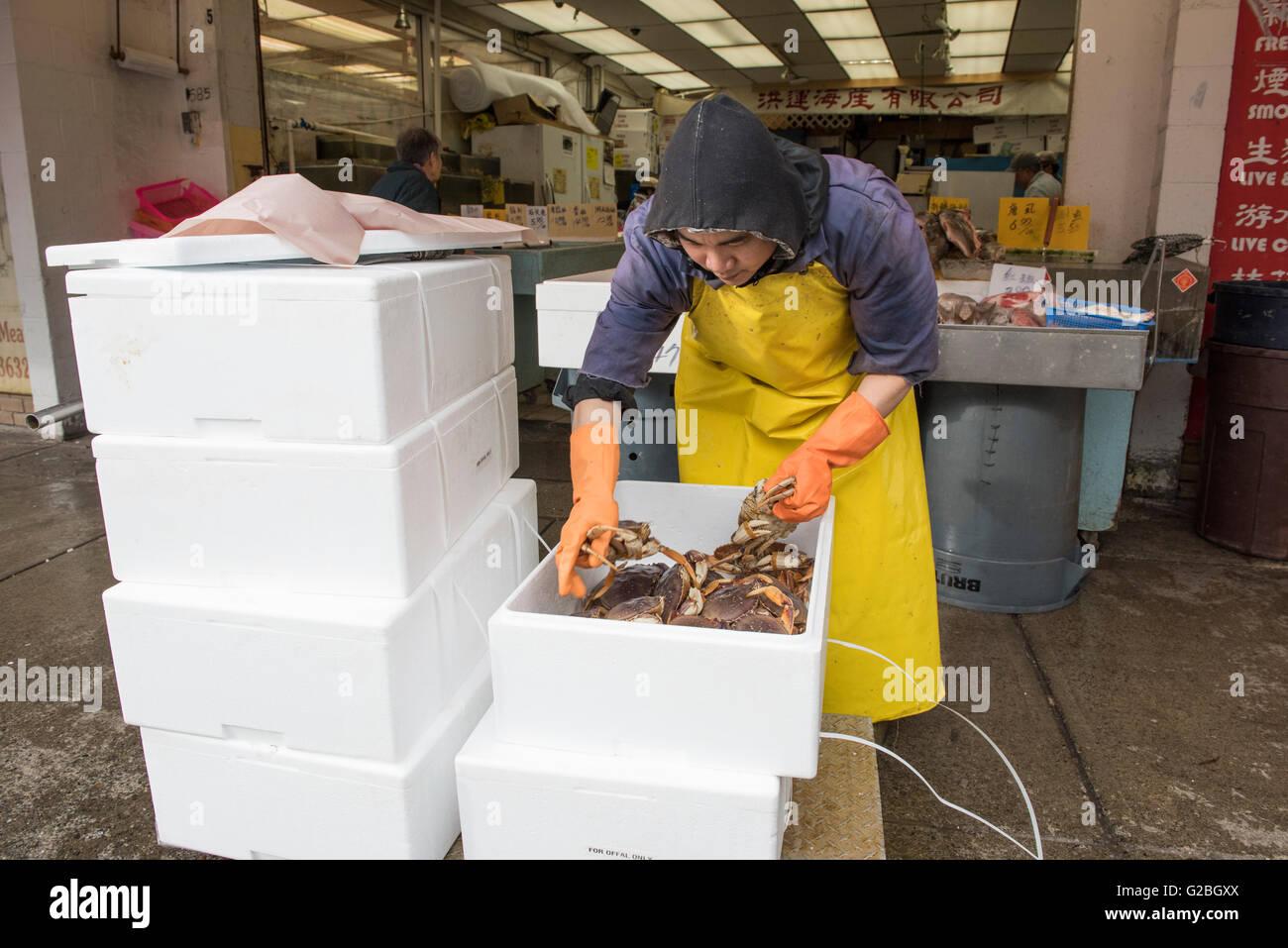 Sélection de crabes poissons monger boîtes mousse Chinatown fish market, Ville de Vancouver Photo Stock