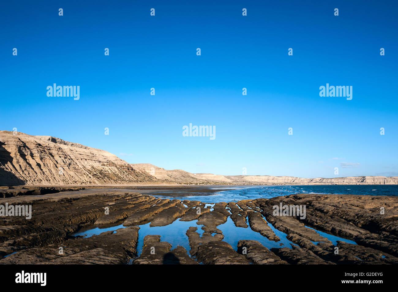 La côte de la patagonie, Peninsula Valdes, Argentine Photo Stock