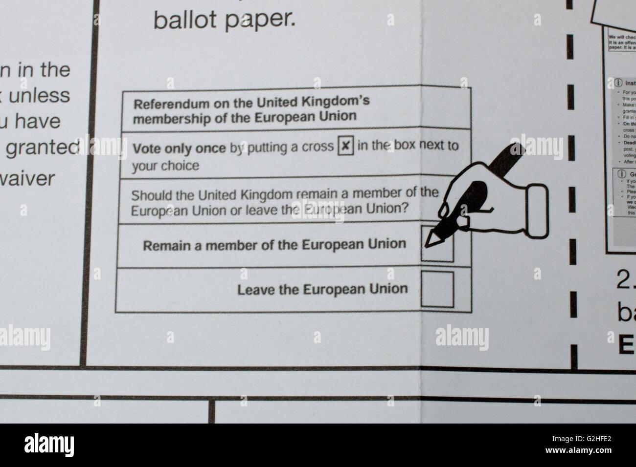 Gros plan du vote postal a critiqué l'illustration d'un biais au cours de la 2016 référendum Photo Stock