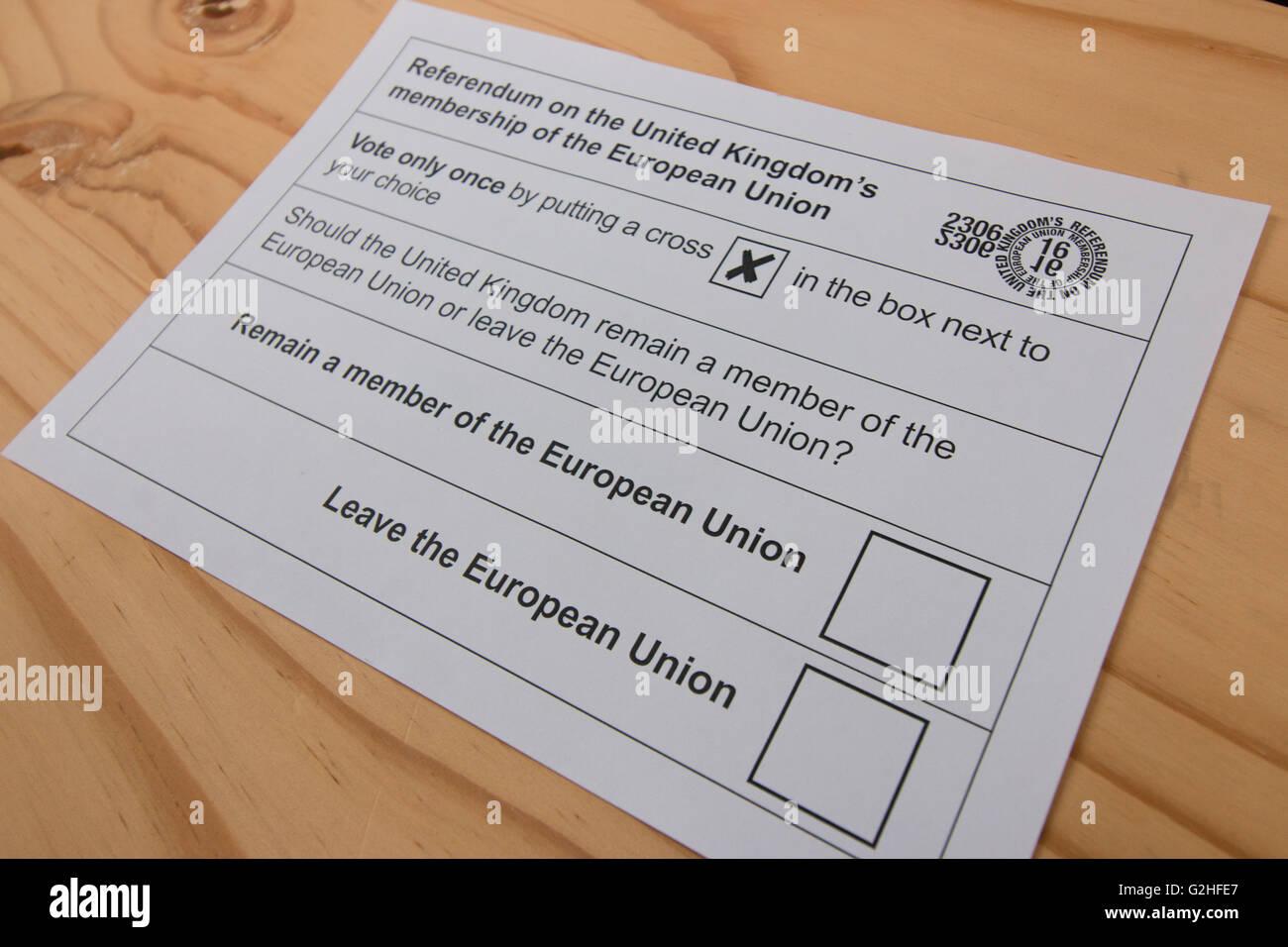 Bulletin de vote pour le référendum de 2016 du Royaume-Uni sur l'adhésion à l'UE Photo Stock