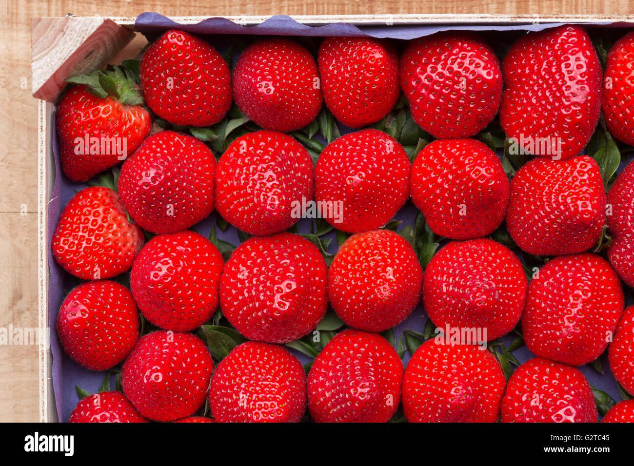 Les fraises dans un récipient alimentaire Photo Stock