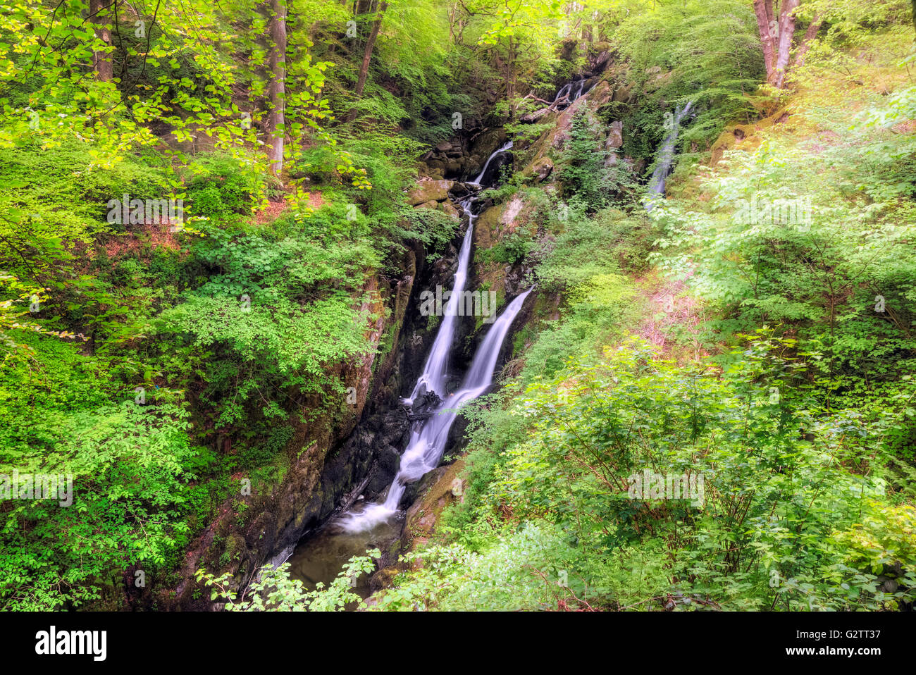 Ambleside, Stock Ghyll Force, Lake District, Cumbria, England, UK Photo Stock