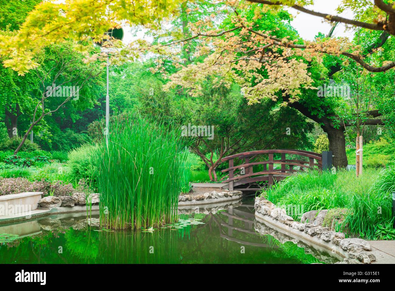 L 39 le marguerite de budapest le jardin japonais sur l 39 le for Achat jardin japonais