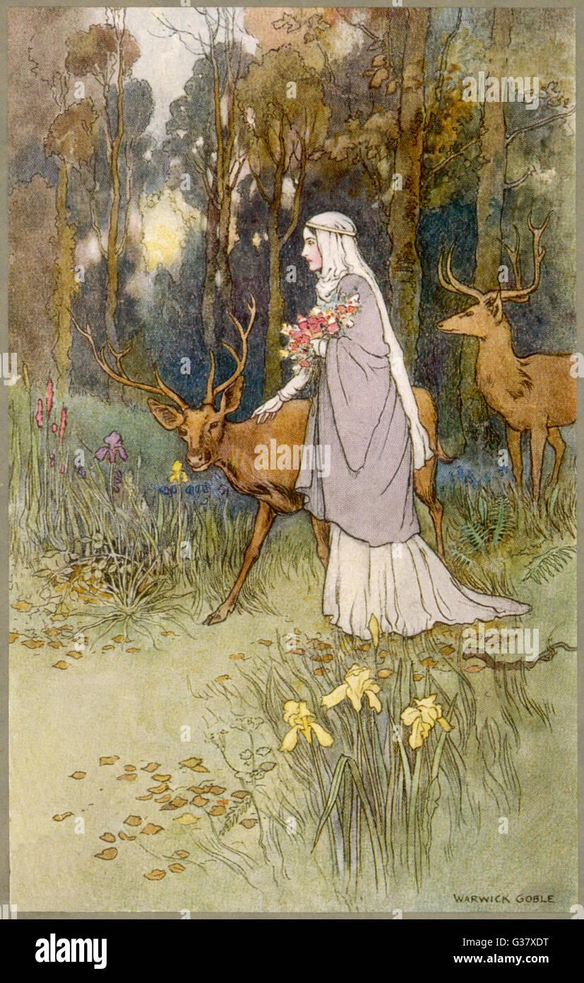 Une femme marche à travers les bois avec un timide dun deer Photo Stock