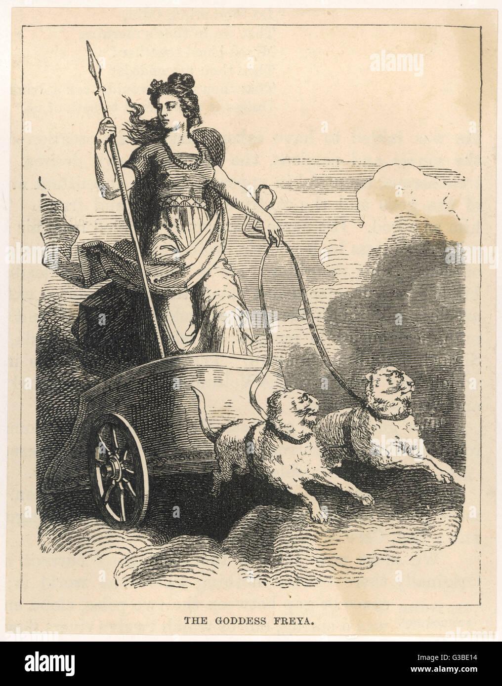 Dans la mythologie scandinave, la déesse de l'amour, le mariage et la mort. Elle était l'épouse Photo Stock