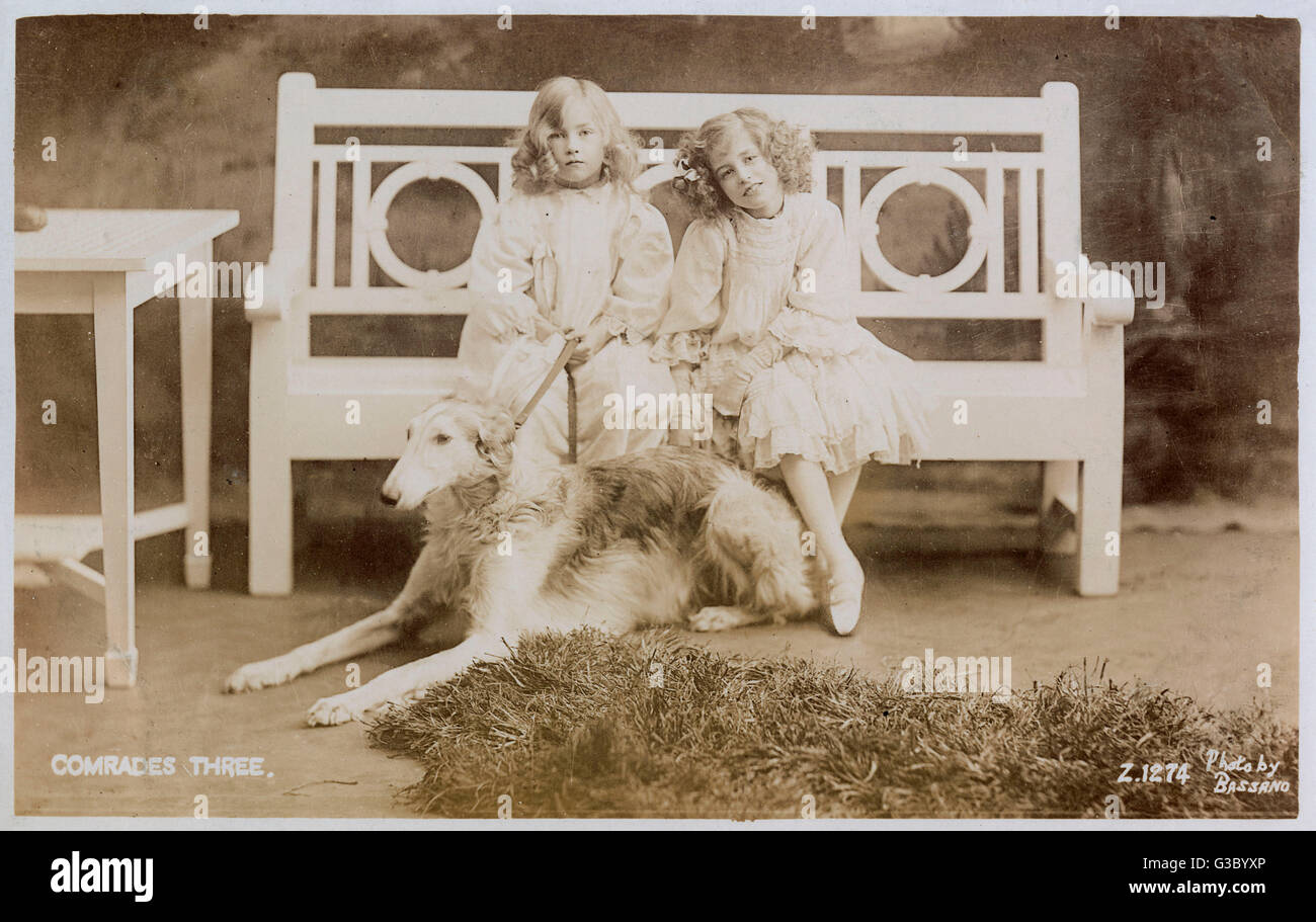 Trois camarades -- Deux filles sur un banc peint en blanc avec un grand chien à leurs pieds. Date: vers Photo Stock