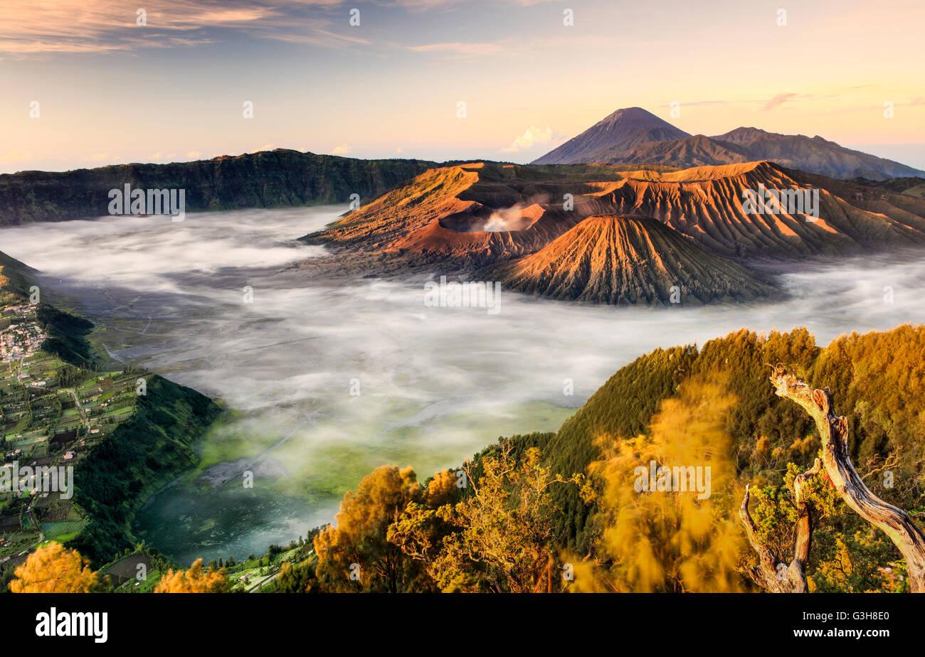 La vue du Mont Bromo à partir du point de vue Penanjakan, Le Mont Bromo, Parc National de l'Est de Java, Photo Stock