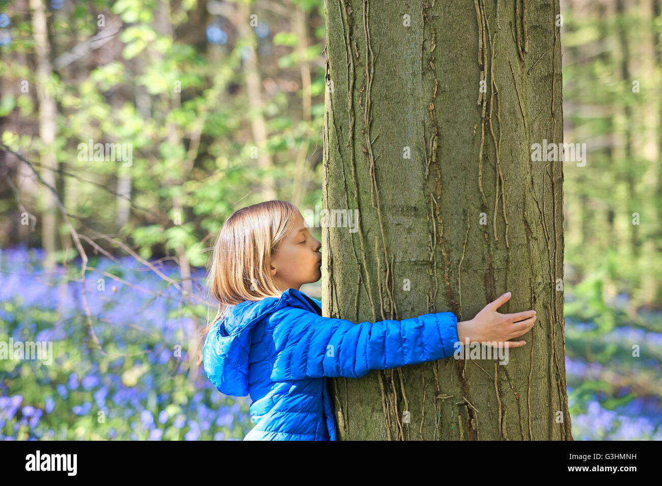Girl kissing arbre en forêt, bluebell Hallerbos, Bruxelles, Belgique Banque D'Images
