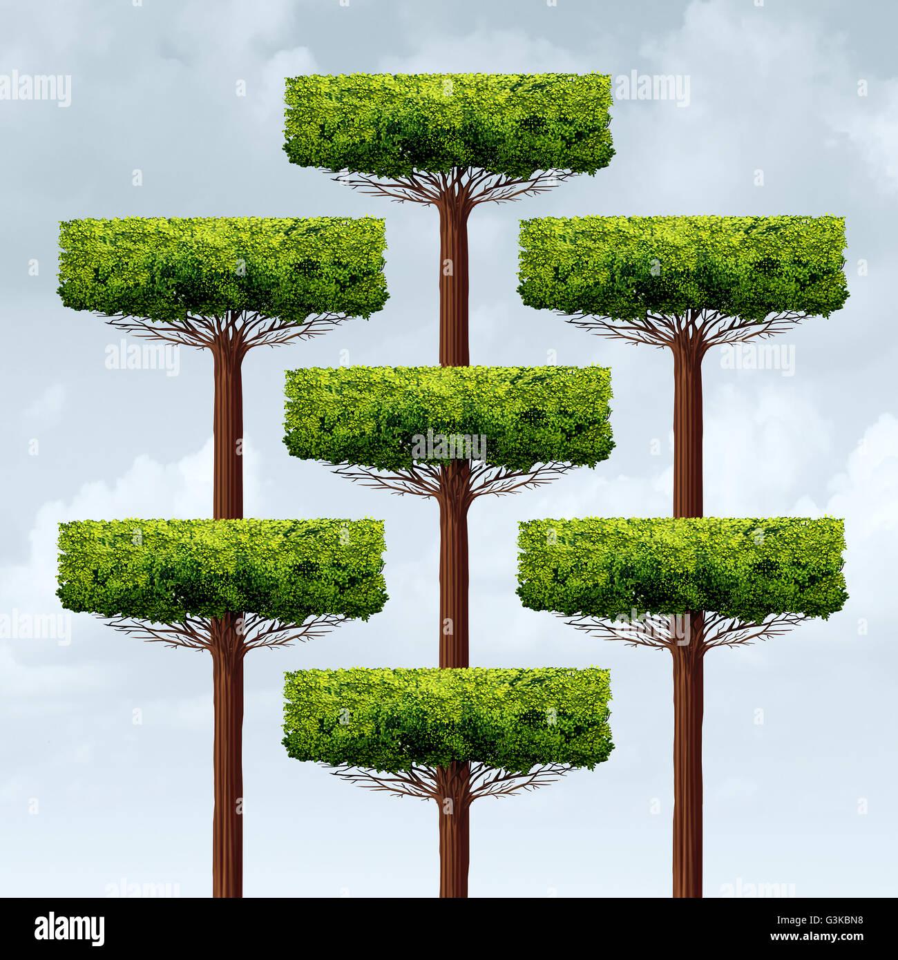 La croissance de la structure de l'organisation comme un groupe d'arbres de plus en plus organisée Photo Stock