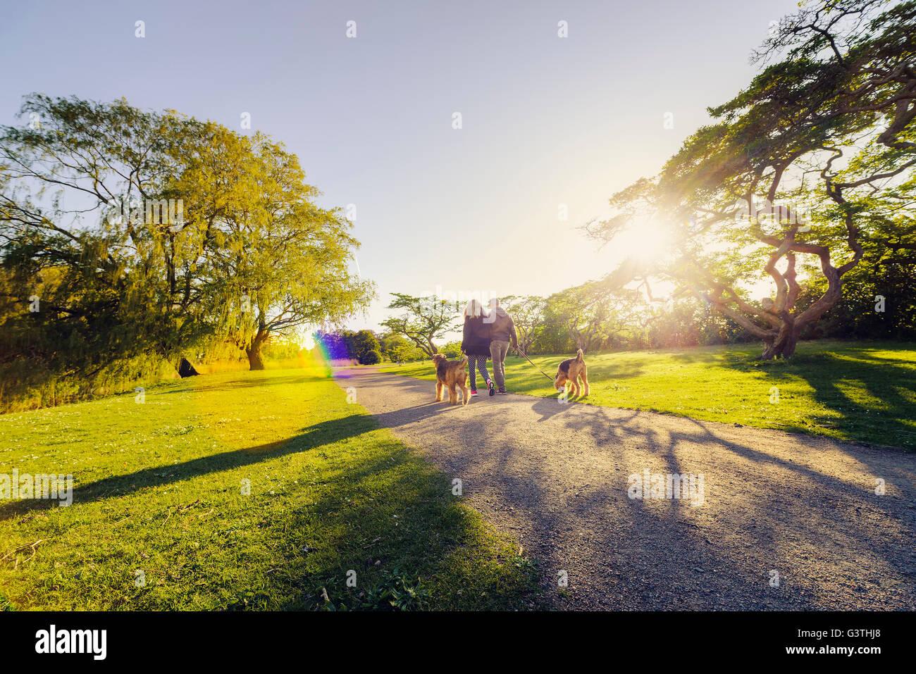 La Suède, Malmö, Malmo, Malmö Folkets park, Mid-adult couple avec des chiens Banque D'Images