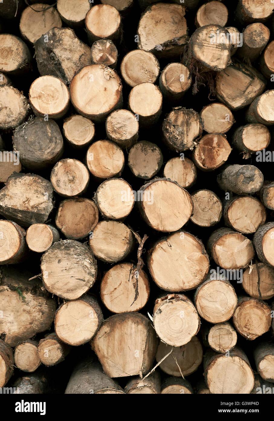 Des piles de bois rugueux, Vermont, Etats-Unis Photo Stock