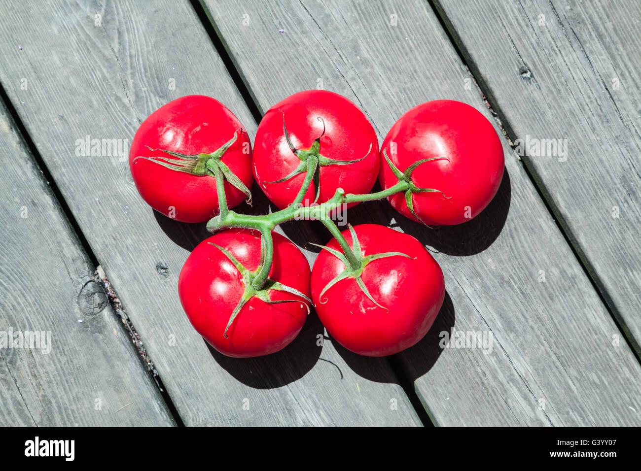 5 tomates rouges en forme de cercles olympiques au fond du bois-de-chaussée Photo Stock