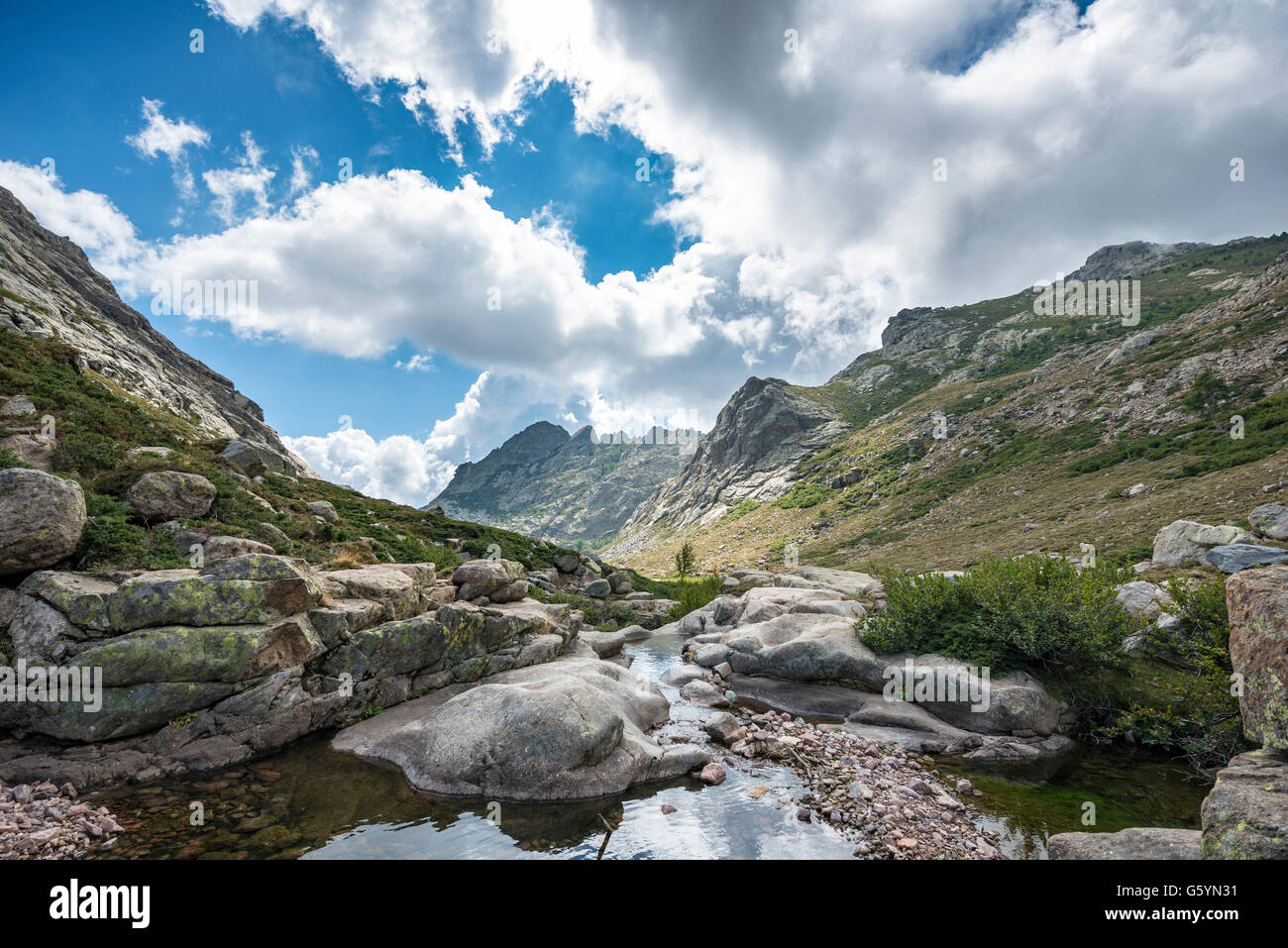 River Golo, paysage montagneux, Parc Naturel de la Corse, Parc naturel régional de Corse, Corse, France Photo Stock
