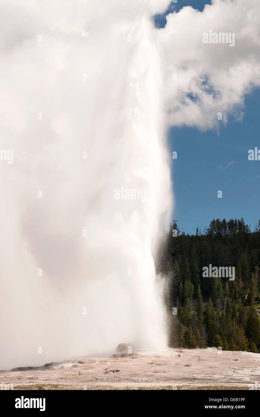 L'éruption du geyser dans le Parc National de Yellowstone, Wyoming, USA Photo Stock