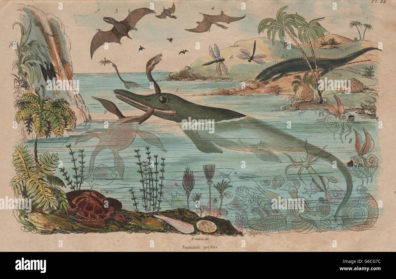 Les DINOSAURES: Animaux Perdus. Diverses espèces animales disparues, antique print 1833 Banque D'Images